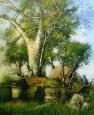 Copac in Kenya/Tree in Kenya
